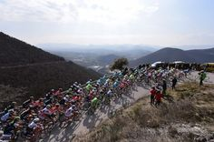 2015 Tirreno-Adriatico, stage 4:  The peloton on the Poggio Photo: Tim De Waele | TDWsport.com