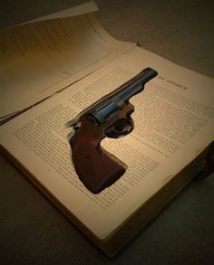 If you don't want criminals to find your gun, put it in a book. LMFAO. Reading is for nerds!