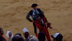 Dying Bull Is Comforted In Last Moments Despite Bullfighters' Protests Last Moment, In This Moment, Feral Cats, Animal Rescue, First Love, Brave, People, First Crush, Animal Welfare