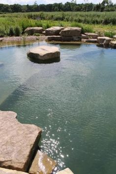 Having a pool sounds awesome especially if you are working with the best backyard pool landscaping ideas there is. How you design a proper backyard with a pool matters. Swimming Pool Pond, Natural Swimming Ponds, Natural Pond, Landscaping With Rocks, Pool Landscaping, Diy Pond, Pond Design, Dream Pools, Water Garden