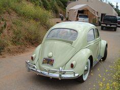 1961 VW Beetle #vintage #volkswagens