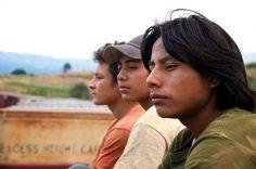 Meilleur film, meilleur acteur, meilleur second rôle... La Jaula de oro du réalisateur Diego Quemada-Diez a fait un triomphe lors de la cérémonie des Ariels, l'équivalent des César. Ce premier long-métrage, entre documentaire et fiction, montre la dure réalité des migrants centraméricains en route vers les Etats-Unis.