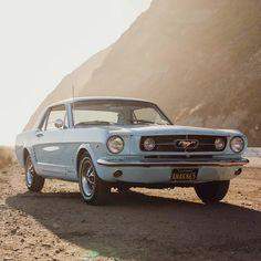 Ford Mustang 1967, Blue Mustang, Mustang Cars, Car Ford, Ford Gt, Pontiac Gto 1969, Pontiac Gto For Sale, Lamborghini Aventador Roadster, Bugatti Cars