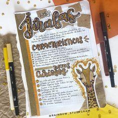 Bullet Journal Banner, Bullet Journal Notes, Bullet Journal School, Bullet Journal Ideas Pages, Cute Notes, Pretty Notes, School Notes, College Notes, Stabilo Boss