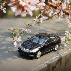 #창덕궁 에 수줍게 피어난 #앵두나무 #꽃 이 #봄소식 을 전합니다  Flowers of #cherry #tree just bloomed in #Changdeokgung #Palace brought the #message of #spring  #Hyundai #Motor #Grandeur #Azera #car #toy #flower #travelling #photo #fun #daily #현대자동차 #장난감 #자동차   #여행 #소소잼 #일상 #데일리 #자동차그램