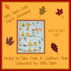 Patty Pants Cloth Diaper Giveaway ~ Ends 10/17 - mama pure