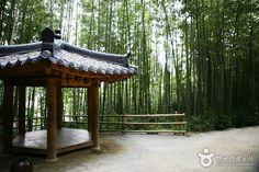 Juknokwon (Bamboo Garden) (죽녹원)- Jeollanam-do