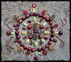 Diana Heyne: Land Art Workshop In May With Diana Heyne Land Art, Nature Crafts, Fall Crafts, Arts And Crafts, Ephemeral Art, Environmental Art, Recycled Art, Art Plastique, Elementary Art