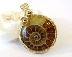 Round Ammonite Wire Wrapped Pendant Unique Gold by BellaDivaBeads