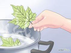 (Diferentes metodos)se secan hojas para usar como decoraciones en proyectos de manualidades
