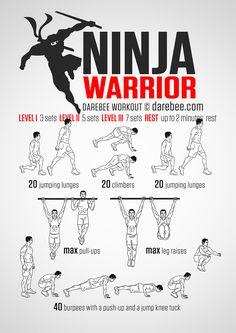 Ninja Warrior Workout                                                                                                                                                                                 More