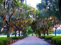 Savannah is packed full of historical monuments, park squares, mansions, cathedrals and a vibrant waterfront. These are the top 10 things to do in Savannah.