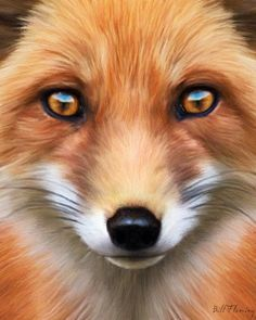 Red Fox image by komodoempire digital art ... paintings ... airbrushing ... animals ... 2010.