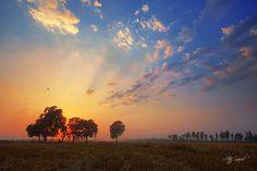 Punjab..