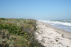 Canaveral National Seashore, Titusville, FL...great place to go to meditate and get away from the crowd of beachgoers...you can walk for miles and not see anyone
