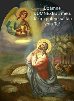 Jesus Our Savior, Heart Of Jesus, Jesus Is Lord, Catholic Art, Catholic Saints, Religious Images, Religious Art, Rosary Novena, Jesus Christ Images