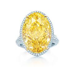 La bague en diamant jaune de Tiffany & Co. Blue Book 2014