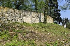 """1390  Um diese Stifts- und Marktsiedlung lagen Höfe, Gärten und Mühlen. Es waren die Höfe vor dem Holenstratertor 1352, vor dem Galgentor 1390, der kleine Dieckhof 1491 62), der Spitalshof 1428 63) und vor aIlem die noch heute erhaltene Bezeichnung der """"Hohen Höfen"""" 64) - urkundlich erst 1420 erwähnt- berichten uns von einer engen Besiedlung. Eine Mühle - im Osten der Stadt gelegen - wird 1159 erwähnt, sie wurde später in die Nähe der St.-Georgs- Kirche verlegt, das Stift besaß die…"""