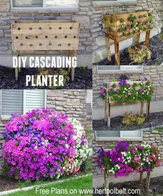 Start with an old pallet, add some holes and you can grow an amazing Wave cascading petunia planter box this summer!  Free plans and planting instructions on www.hertoolbelt.com