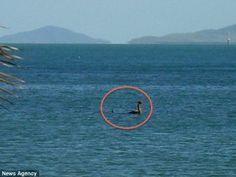 'Loch Ness Monster' sighting in Australia creates a stir