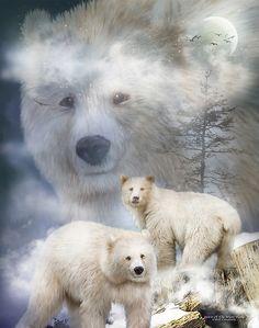 White Spirit Bear art by Carol Cavalaris. White Polar Bear, Polar Bears, White Bears, Spiritual Animal, Spirit Bear, Animal Spirit Guides, Bear Face, Cross Paintings, Resin Paintings