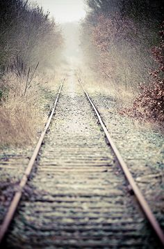 All the old railroad tracks that we used to walk along are now gone. I walked the ones by my Grandma's the most as it was close. The trains moved a lot of grain back then and I think it would be better if we still had them today. Tracks all got bad and so government decided to build interstate highways instead. Joyce Poppen