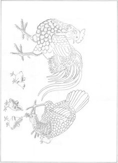 Korean Painting, Art Template, Cool Sketches, Folk Art, Birds, Drawings, Illustration, Roosters, Tattoo Ideas