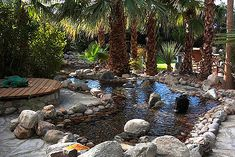 Healing Waters Beneath the Desert of Palm Springs and the ...