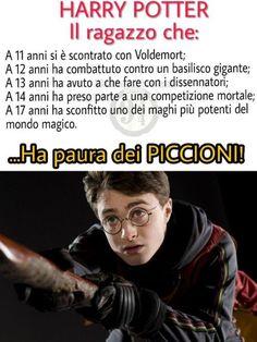 Harry Potter Funny Tumblr, Harry Potter Anime, Harry Potter Love, Harry Potter Fandom, Harry Potter World, Harry Potter Memes, Daniel Radcliffe, Film Books, Drarry