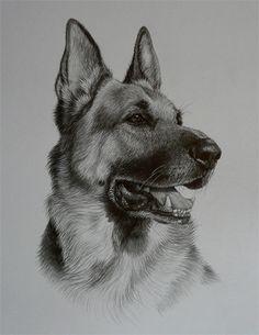 Julie Rhodes - Commissioned Pet Portraits http://www.julieandpatrhodes.co.uk/juliepages/petportraits.htm