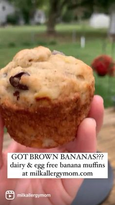 Dairy Free Recipes For Kids, Dairy Free Baking, Dairy Free Diet, Vegan Baking, Gluten Free Recipes, Kids Meals, Family Meals, Family Recipes, Banana Chocolate Chip Muffins