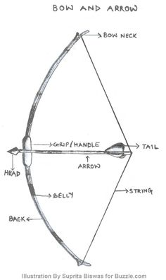the anatomy of the bow and arrow