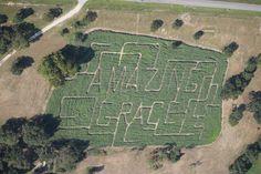Aerial photo 2013