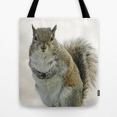 Gray Squirrel Photo Tote Bag Tote Bag Photo Tote Photo Bag