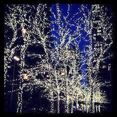New York City Christmas time!