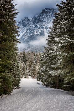 59 Ideas For Winter Landscape Photography Snow National Parks Winter Szenen, Winter Magic, Winter Road, Winter Mountain, Winter Camping, Mountain View, Winter White, Mountain Biking, Beautiful World