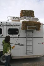 """Bale Bucker, horse trailer hay bale electic lift, solution for an unused hay… Horse Trailer Organization, Trailer Storage, Rv Storage, Storage Ideas, Horse Camp, My Horse, Horses And Dogs, Show Horses, Horse Trailers"
