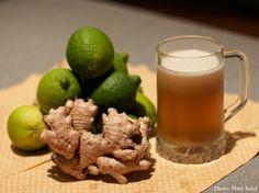 Recipe: Ginger Beer - Chelsea Green