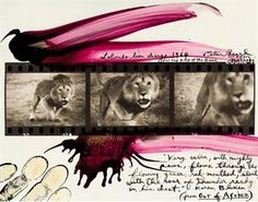 Lolindo Lion Charge, 1964
