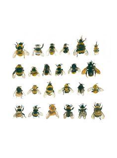 lesfoudres:bees from Welcome- Les Éditions de la Cerise