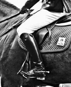 Horse addict