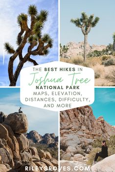 Joshua Trees, jumbo rocks, mountain summits, abandoned mines, and more are included in the 20 best hikes in Joshua Tree. Download the free checklist here! Best hikes in Joshua Tree, Hikes in Joshua Tree National Park, Joshua Tree Hikes, Best Trails in Joshua Tree, Hiking Trails in Joshua Tree #joshuatree #nationalparks #california #usa