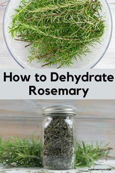 How to dehydrate fresh rosemary. Dry your own herbs and save hundreds of dollars a year. Drying Dill, Drying Herbs, How To Dry Rosemary, Preserve Fresh Herbs, Excalibur Dehydrator, Salad Spinner, Dehydrator Recipes, Preserving Food