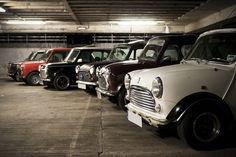 Classic Minis : Photo