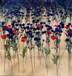 blomster i Collette