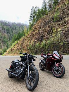 Iron 883, Bike Life, Motto, Harley Davidson, Motorcycles, Instagram, Mottos, Motorbikes, Motorcycle