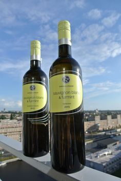 Proeven: Puklavec and Friends Sauvignon Blanc Furmint
