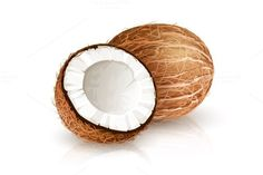 Coconut tropical nut fruit with cut. Eps10 vector illustration isolated white background @creativework247