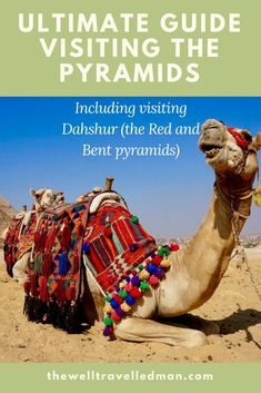 Ultimate guide: Visiting the Pyramids in Egypt - The Well Travelled Family Israel Travel, Egypt Travel, Africa Travel, Egypt Tourism, Morocco Travel, Travel Couple, Family Travel, Travel Guides, Travel Tips