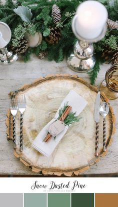 Neutral Winter Wedding Color Palette - Snow Dusted Pine